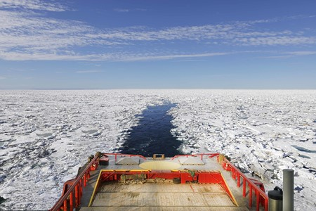 Logistical expert under arctic circumstances