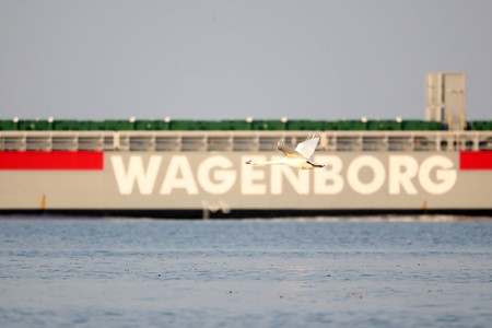 Measures Wagenborg concerning Corona virus